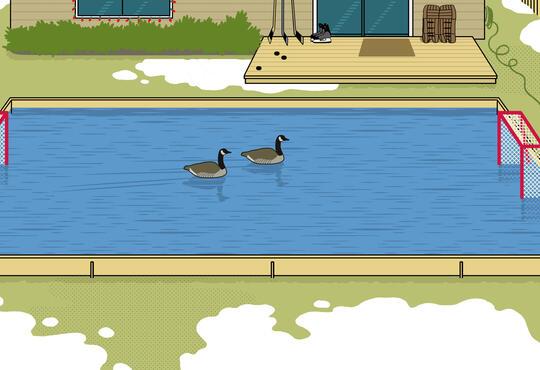illustration of backyard rink