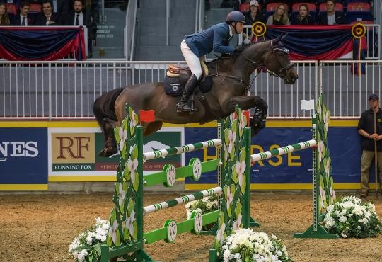 Horse jumping over a vault