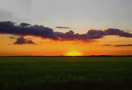 Sunset over a flat field