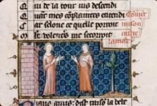 Folio 31r
