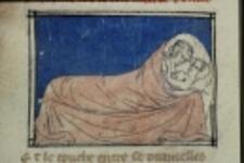 Folio 196v