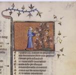 Folio 146r