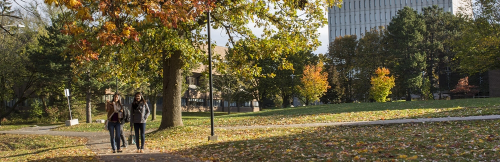 Students walking on Waterloo Campus in the fall