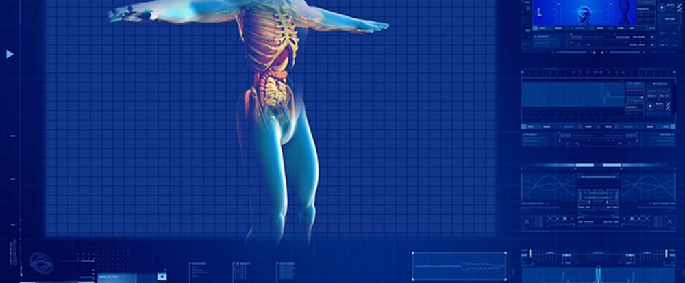 a computer model of a human body on a blue screen