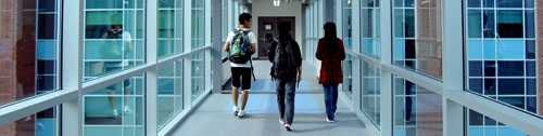 Students walking on the bridge to Mathematics 3.