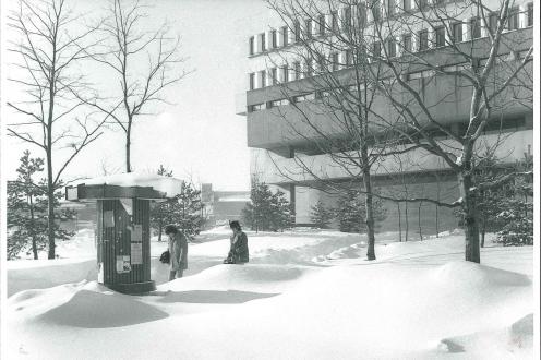Outside of DP, winter