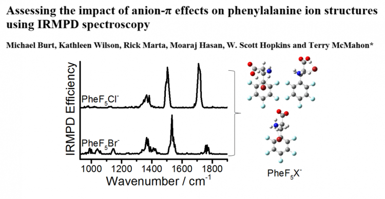 Phys. Chem. Chem. Phys., 2014, DOI: 10.1039/C4CP03776F. Fluorinating Phe creates a π-acidic site that stabilizes halide binding.