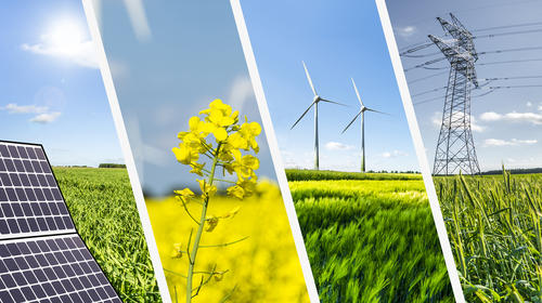 Collage of solar panel, canola flower, wind turbines and powerline