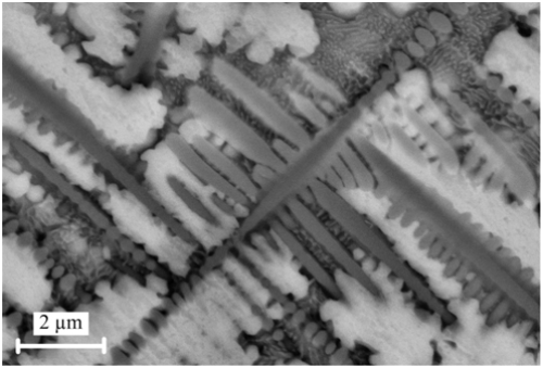 Backscatter SEM image of the very fine dendrite structure of Ti45Nb - The result of the research is published in Surface and Coatings Technology, v. 204 (15), 2010.
