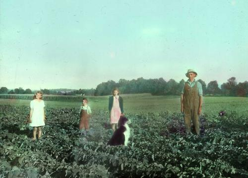 A father, children and dog in a field near Kitchener, Ontario in the 1940s. This black and white photo has been colourized.