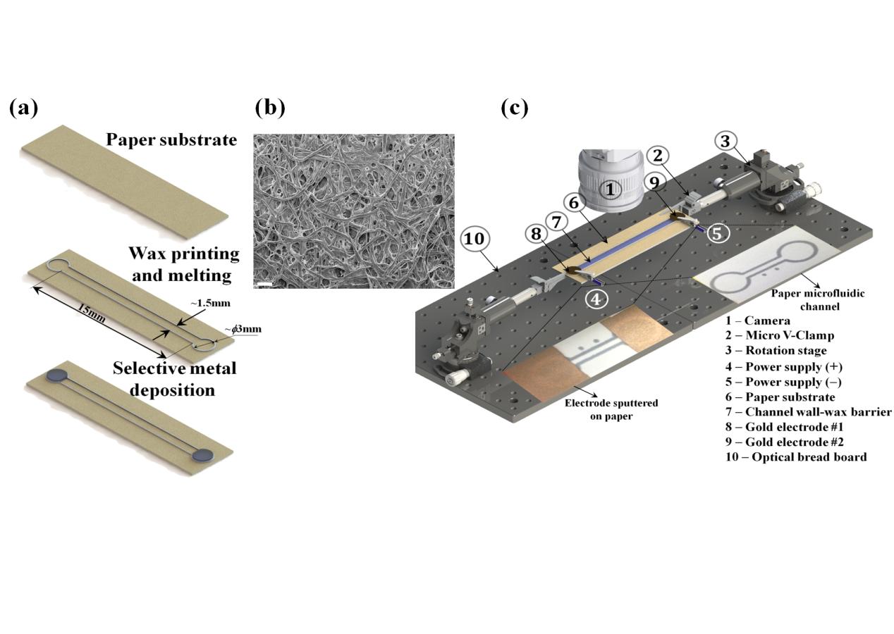 Paper-based microfluidics system demo graphic.