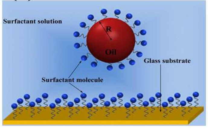 Diagram of a molecule in surfactant solution over glass highlighting their surface molecules.