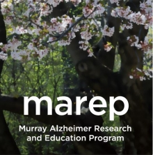 Cherry blossom tree in bloom with MAREP logo