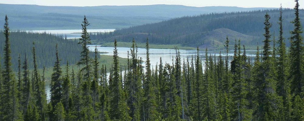 Thelon River watershed