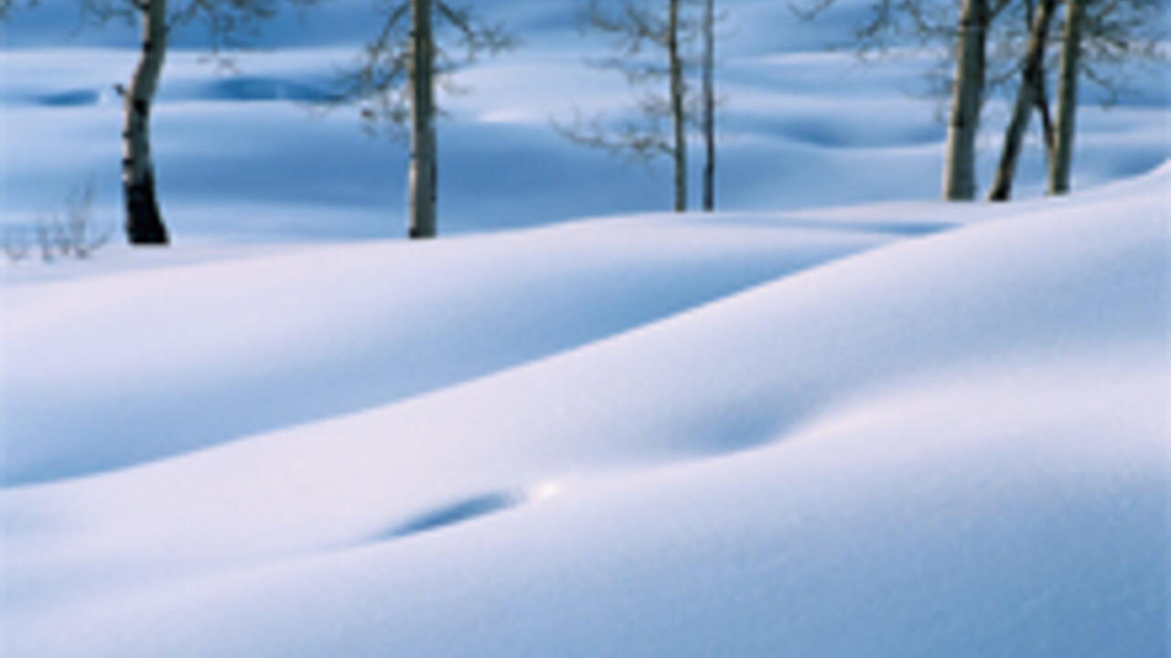 A snow covered landscape with trees in the distance