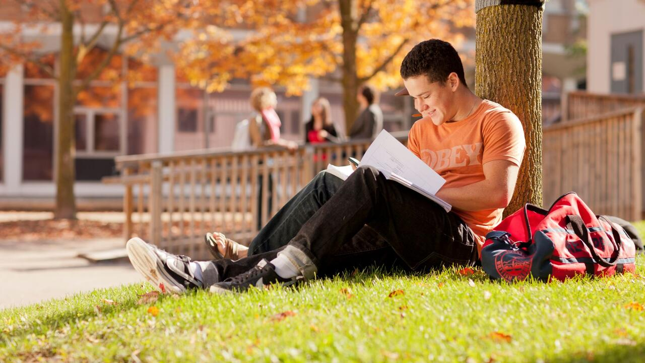 A student studies outside on a fall day at the University of Waterloo.