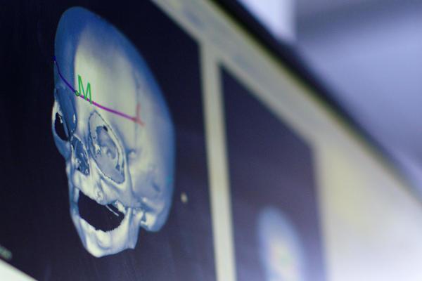 Skull on computer screen