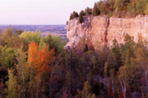 A lookout point shows autumnal trees and a sheer cliff.