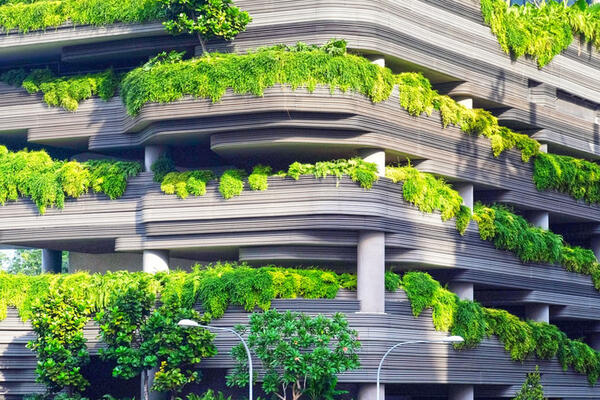 building with greenery
