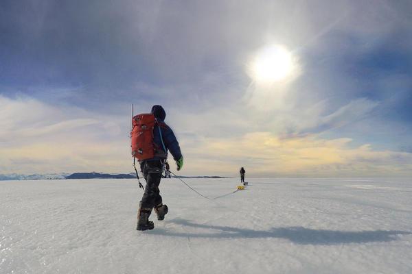 Dow walking across an ice sheet