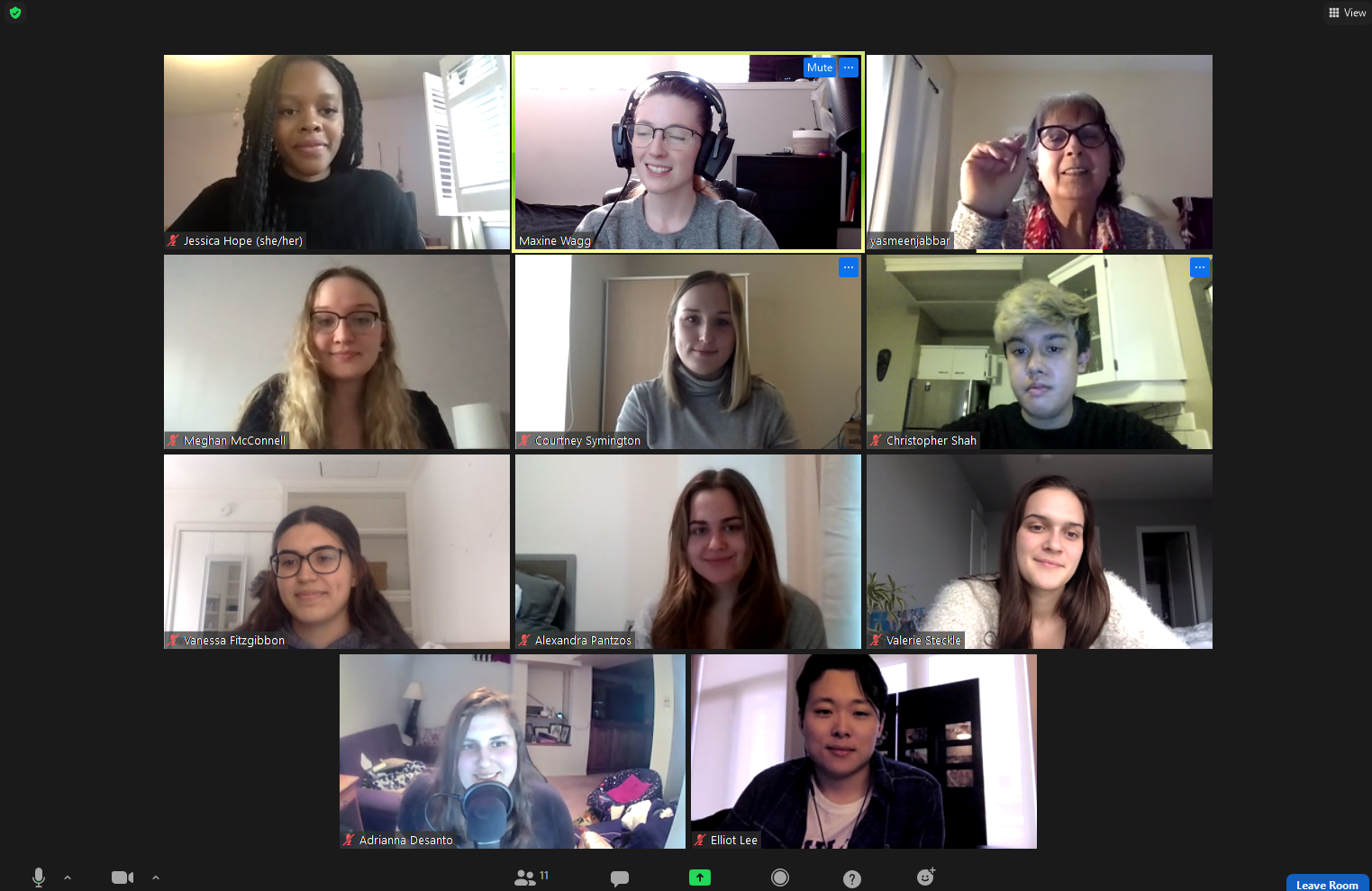 Screencapture of one of the online Zoom meetings