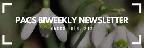 PACS Biweekly Newsletter, March 10th 2021