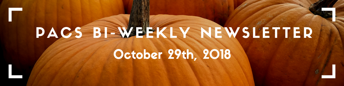 "PACS Newsletter banner: image of pumpkins with the title ""PACS Bi-Weekly Newsletter, October 29th"" overtop"