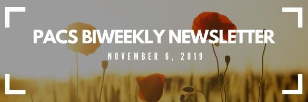 biweekly newsletter header. Pictured is poppies