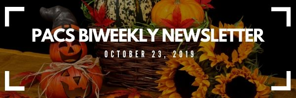 MPACS newsletter banner for October 23. Picture of sunflowers and pumpkins