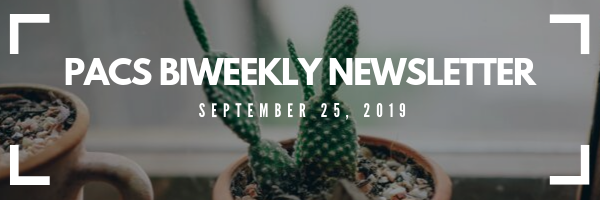 PACS newsletter banner for september 25. Image of catus in a pot
