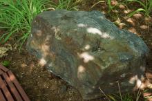 Giant mine breccia