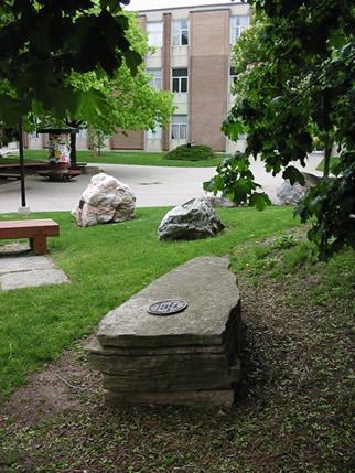 Eramosa dolostone peter russell rock garden university for Landscaping rocks lodi ca