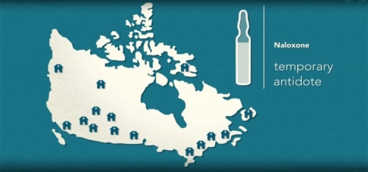 Map of Canada with pharmacies marked and text reading 'naloxone. temporary antidote'.
