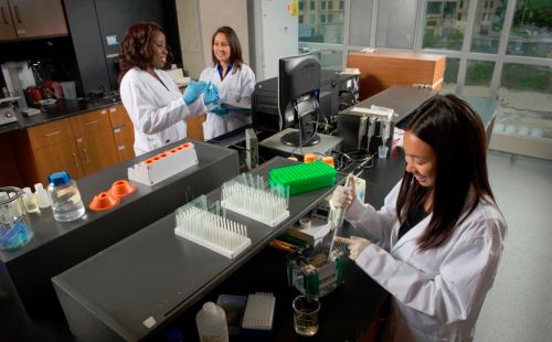 Image of students conducting lab-based research.