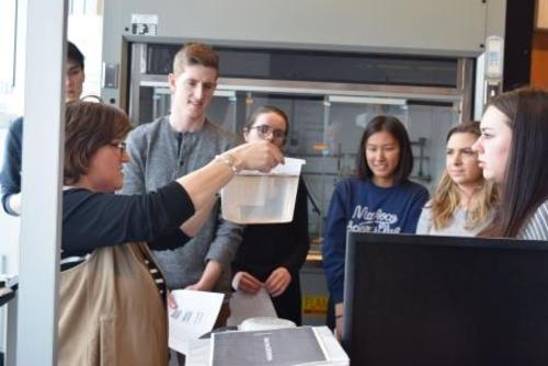 Monica Tudorancea explaining her experiment to students