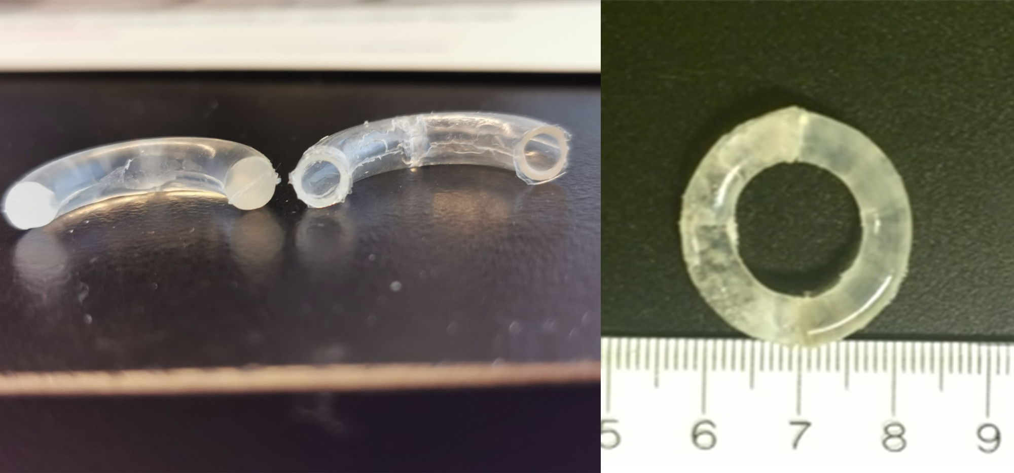 Segmented ring in two parts and assembled