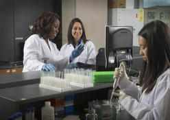 Three graduate students conducting research in a scientific lab