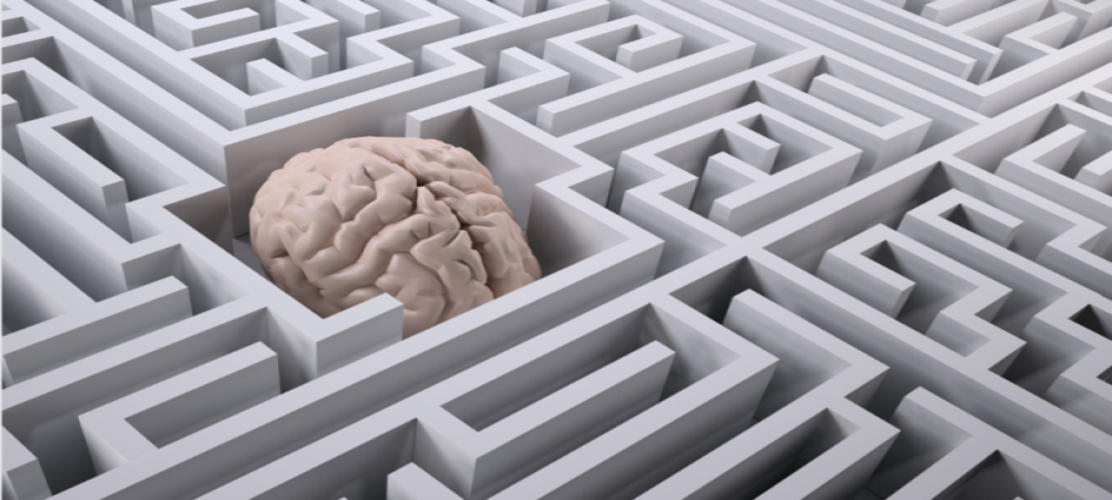 Illustration of brain in a maze