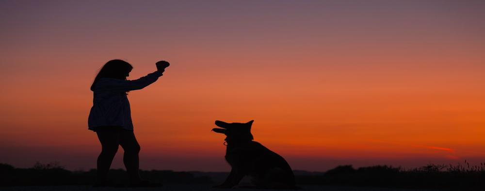 Silhouette of girl with dog in front of a sunset