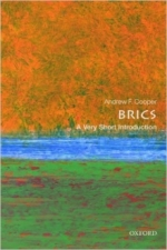 The BRICS cover