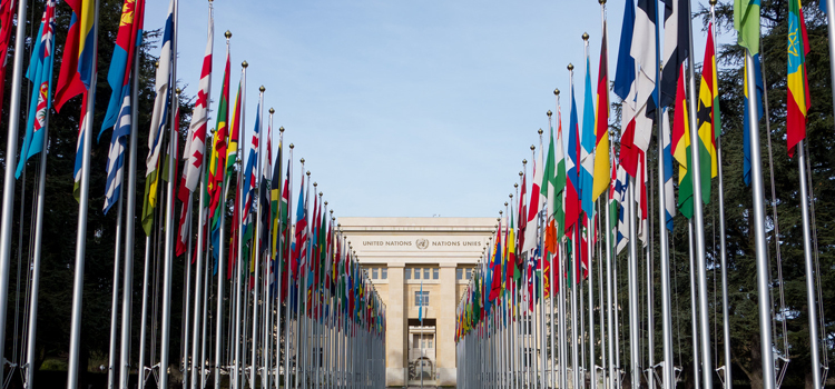 UN building with flags