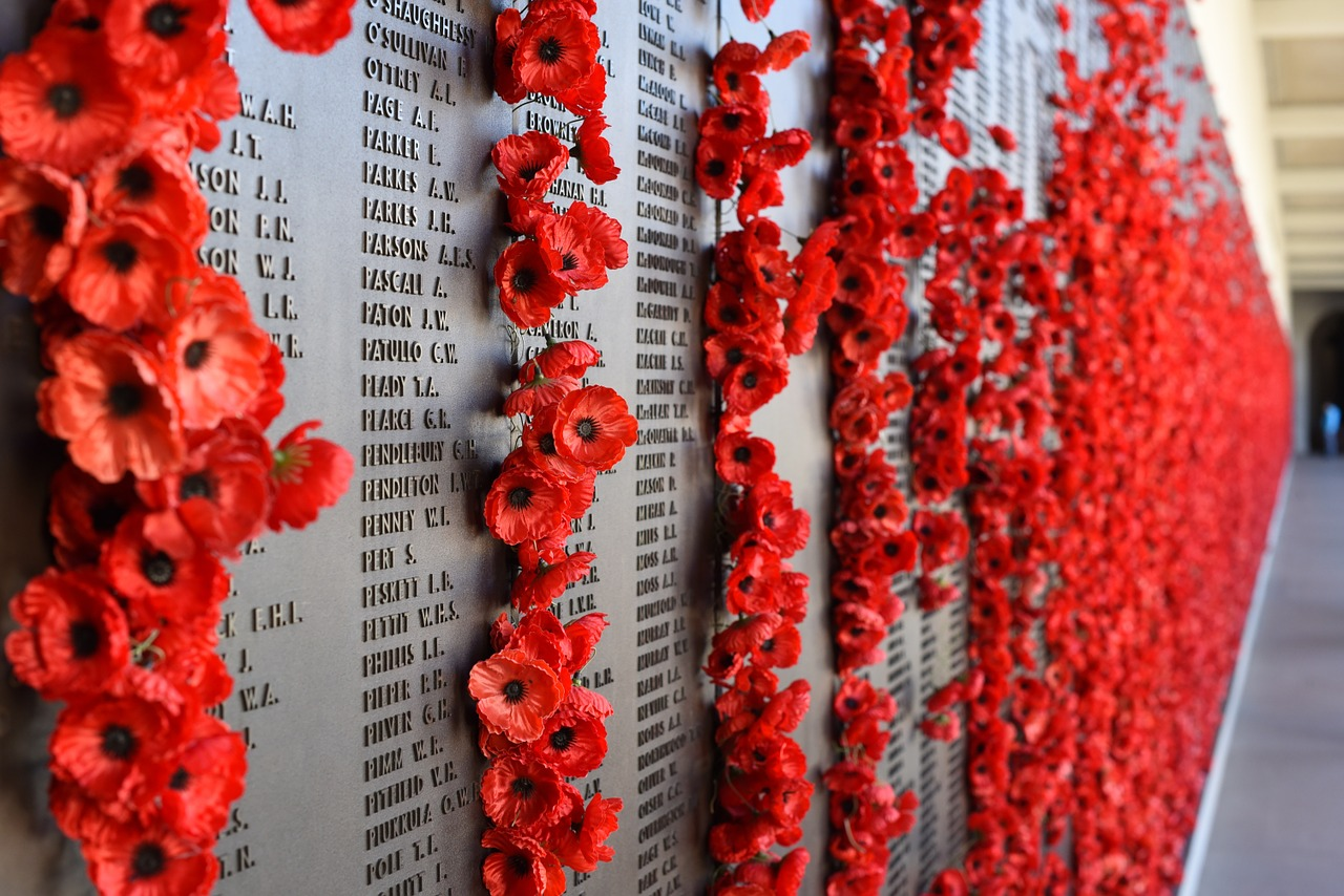 Poppies on a plaque of soldier's names.