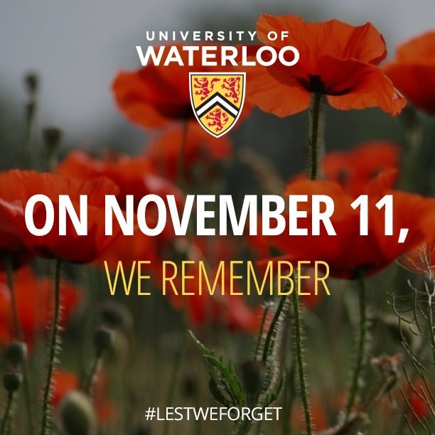 Text saying On November 11, We Remember in a field of poppies