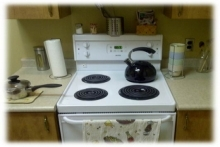 picture of a stove in research lab
