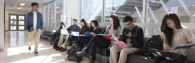 Image of students studying