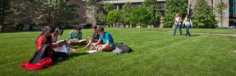 Image of students studying on grass
