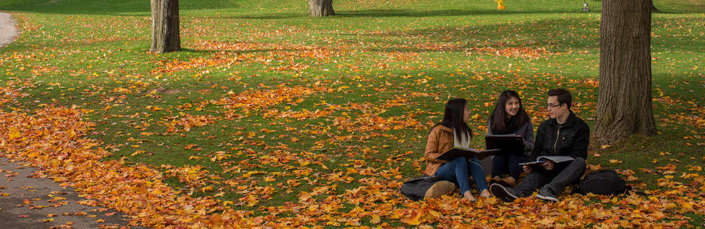 Students sitting together with autumn leaves on the ground