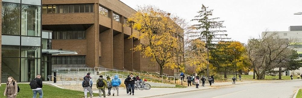 Image of Ring Road side of Needles Hall in fall