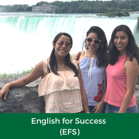 English for Success (EFS)