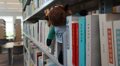 East Asian book shelf with stuffed Renison moose on it